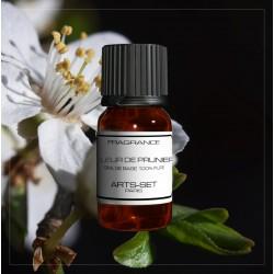 Fragrance Plum Blossom