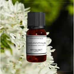 Fragrance Osmanthus